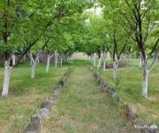 Գյուղ. հող, Կոտայք, Աբովյան, Ակունք