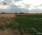 Գյուղ. հող, Կոտայք, Եղվարդ, Զովունի